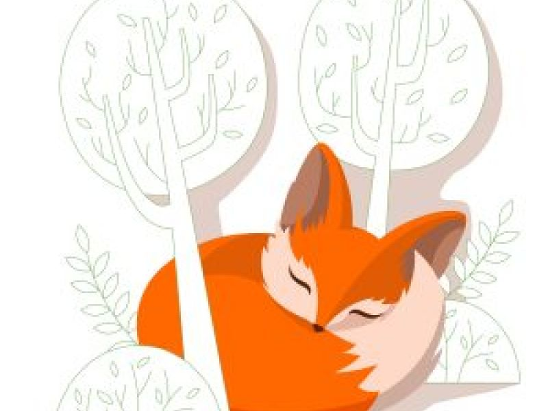 Fabulously Foxy Names Inspired By Fabulously Foxy Foxes!