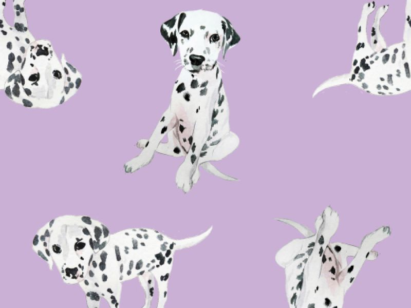 We're Going Dotty For Spot The Difference With Our Latest Activity Sheets For Kids