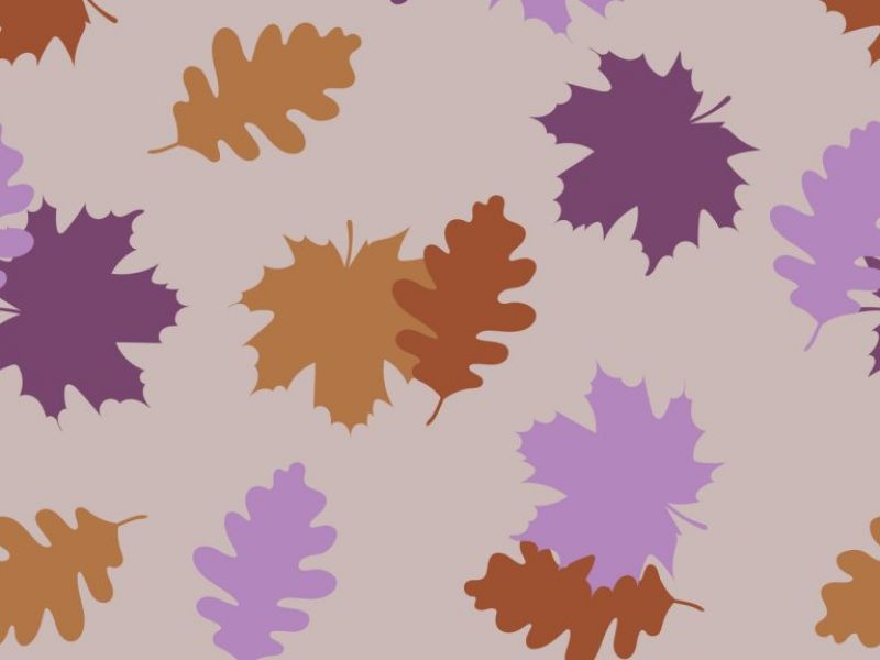 Autumn Starts Here & We've Got Name Labels For All Your (Winter) Gear!