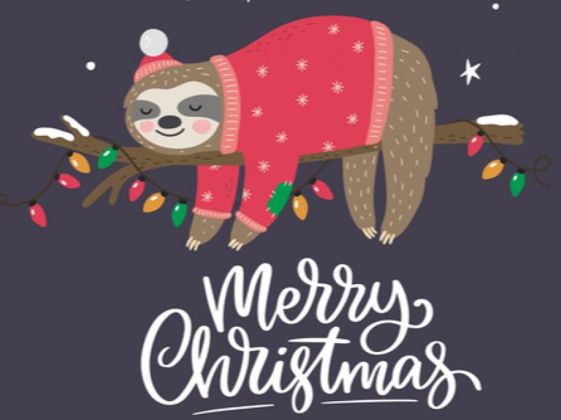 Have A Holly Jolly Christmas From The Stikins Name Labels Team