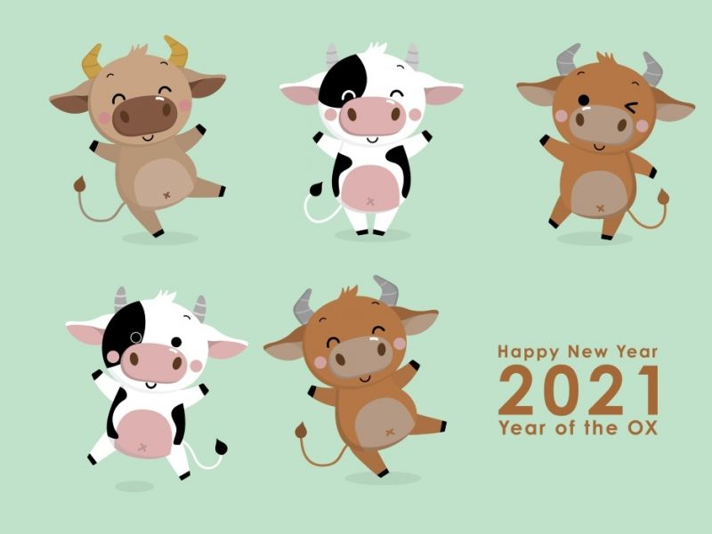 To Celebrate The Year Of The Ox, We Learnt More About Different New Year Dates