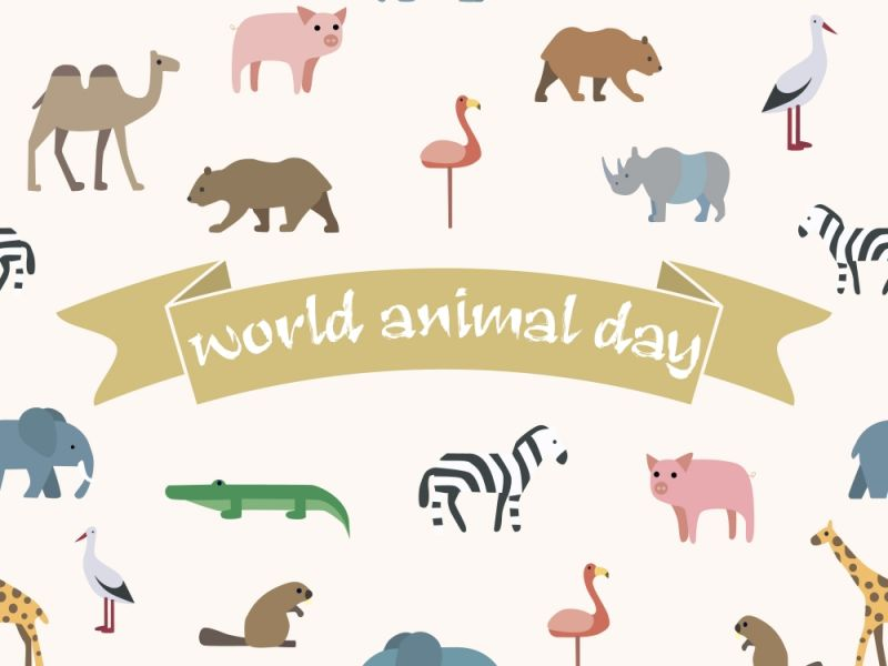 We're Celebrating World Animal Day With Names That Feature Creatures!