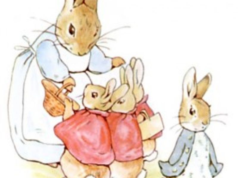 The Tale Of Names From The World Of Beatrix Potter